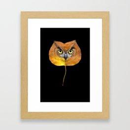 Autumn Owl-4 Framed Art Print