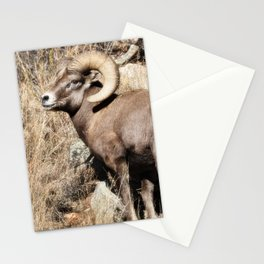 A bighorn sheep in Colorado National Monument Stationery Cards