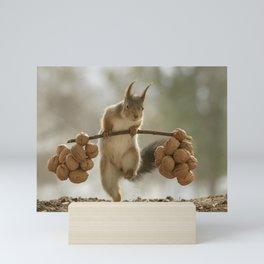 Squirrel the nut carrier Mini Art Print