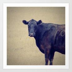 Looking Cow Art Print
