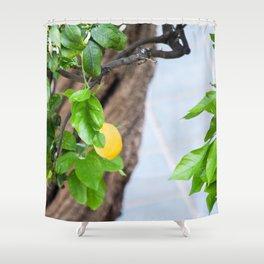 Italian Lemon Tree Shower Curtain