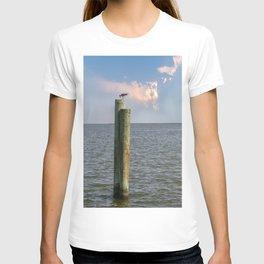 DN18 T-shirt