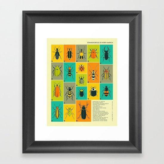 COMMON BEETLES OF NORTH AMERICA Framed Art Print