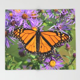 Monarch Butterfly on Wild Asters (square) Throw Blanket