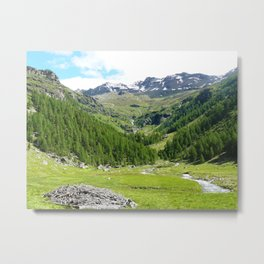 Alpes in summer Metal Print
