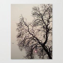 Sunset Flight Canvas Print