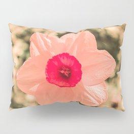 Spring Soft Pink Daffodil Blossom Pillow Sham