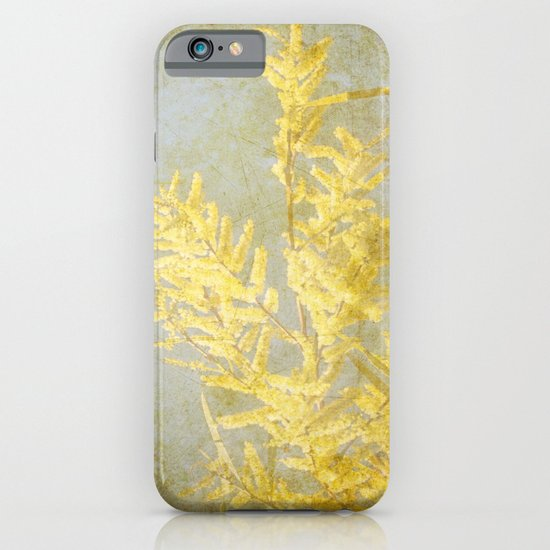 Golden Wattle iPhone & iPod Case