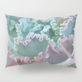 Succulent in the Sand Pillow Sham