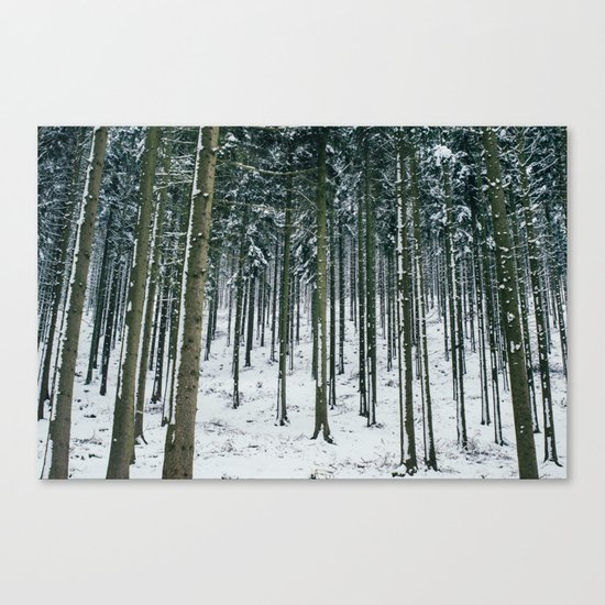 Winter Forest Treescape Canvas Print