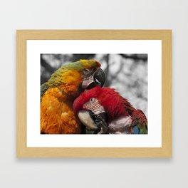 Just good friends Framed Art Print