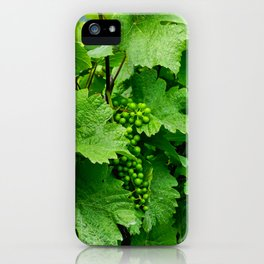 Green Grape Clusters Among the Vines iPhone Case