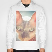 floyd Hoodies featuring Floyd The Cat by Alex DZ