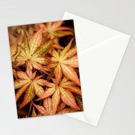 Peaches & Cream Japanese Maple Fine Art Print, Botanical Art, Leaf Texture Stationery Cards