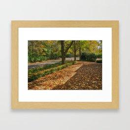 Pure Autumn Framed Art Print