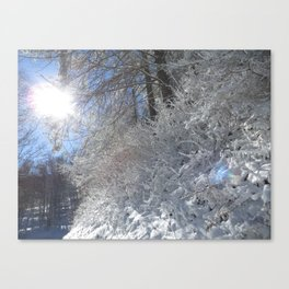 Sugarcoated Canvas Print