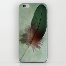 A Gift from a Parrot iPhone Skin