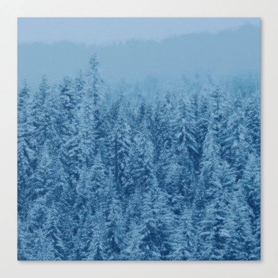 Giant forest Canvas Print