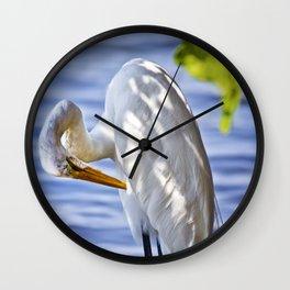 Great Egret Grooming Wall Clock