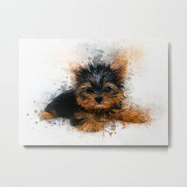 Yorkshire Terrier Puppy Metal Print