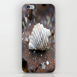 Lone Shell iPhone Skin