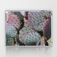 Cactus Whiskers Laptop & iPad Skin