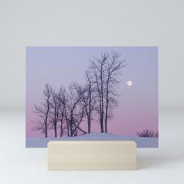Winter comes to Sandbanks Mini Art Print