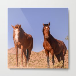 Wild_Horses 3501 - Nevada Metal Print