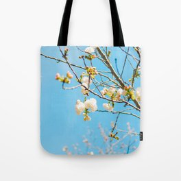 White Blossoms In Spring Against Blue Sky Tote Bag
