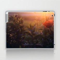 Summer Poppy Laptop & iPad Skin