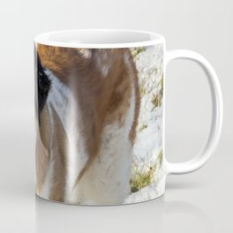 Cute Saint Bernard dog in the snow Coffee Mug