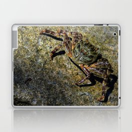 Little Creature Poses 2 Laptop & iPad Skin
