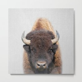 Buffalo - Colorful Metal Print
