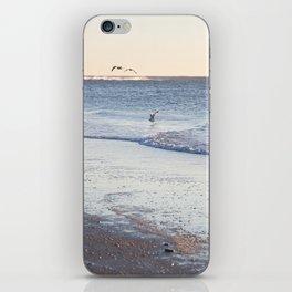 Birdy Beach  iPhone Skin