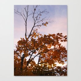 The Leaves That Remain Canvas Print