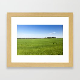 Field with cereal Framed Art Print