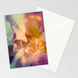 Secret Garden   Japanese rose  Stationery Cards