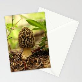 Morel Mushroom Photograph Stationery Cards