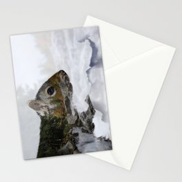 Waterfall Squirrel Stationery Cards