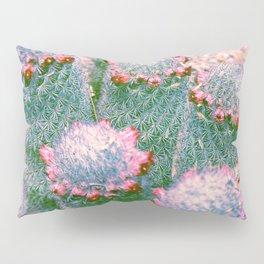 Cactus in Color Pillow Sham