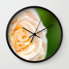 Creamy Rose Wall Clock