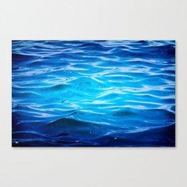Calm Yet Restless Canvas Print