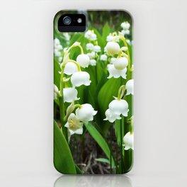 Belle iPhone Case