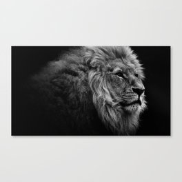 Black Print Lion Canvas Print