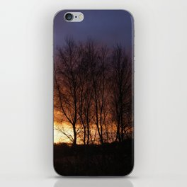 Trees at sunset iPhone Skin