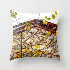Somewhere in Rhode Island - Abandoned Mill 003 Throw Pillow