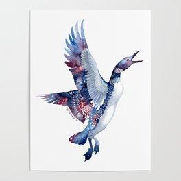 Nebular Loon Poster