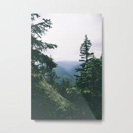 Oregon II Metal Print