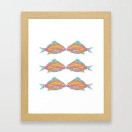 fish tropical beach coastal  Framed Art Print