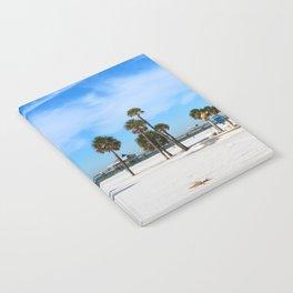 A Florida Winterday Notebook